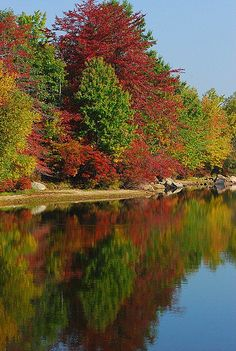 Harriman State Park, N.Y.