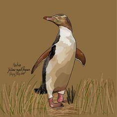 Hoiho (Yellow-eyed Penguin) on Photo Block Photo Blocks, Yellow Eyes, Photo Reference, Penguins, Birds, Website, Digital, Prints, Painting
