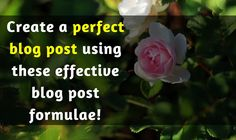Looking for the effective formulae to create an ideal blog post? Here's how to find the best formula that you can use to create the best of your blog posts.