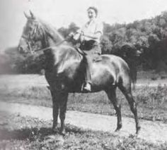 American Saddlebred mare Spelling Bee ridden by Ann Thompson.