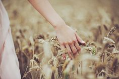 I have always though photography a wheat field is so beautiful and natural Fields Of Gold, The Embrace, Wheat Fields, Felder, Country Life, Country Style, Creative Photography, Storyboard, Earthy