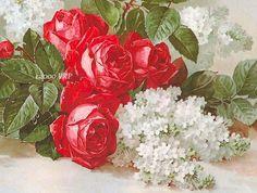 PRINT FREE SHIP Scarlet Red Victorian Roses No 2 Paul de