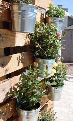 pots and pallet #DIY
