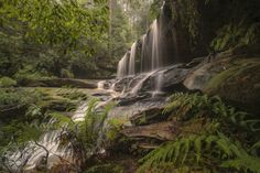 Photo Somersby Falls. by Warren Patten on 500px Central Coast, Nature Photography, Premier Jour, Rivers, Waterfalls, Falling Waters, Fotografie, Nature Pictures, River