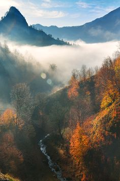 autumnlly: wonderous-world: Doabra Valley, Valcea, Romania...www.romaniasfriends.com