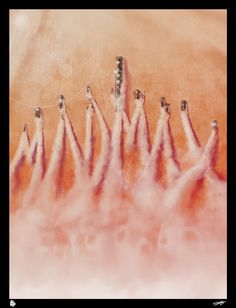 "Mad Max - Fury Road - Andy Fairhurst ---- Poster Posse Project #15 Embraces The Insanity Of ""Mad Max: Fury Road"""