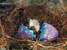 Mosaic Egg in Nest + Cat • Firehouse Tileworks by Clare Dohna
