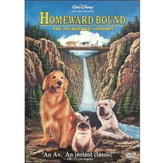 What do people think of Homeward Bound: The Incredible Journey? See opinions and rankings about Homeward Bound: The Incredible Journey across various lists and topics. Disney Dvd, Film Disney, Disney Movies, Childhood Movies, All Movies, Great Movies, 90s Kids Movies, Movies Online, Awesome Movies