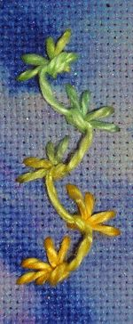 Butterfly Chain Stitch