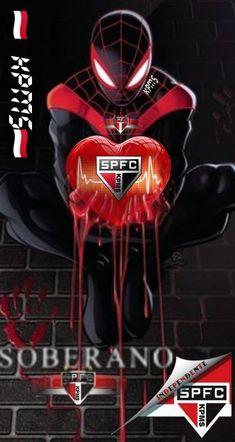 Darth Vader, Fictional Characters, Sao Paulo