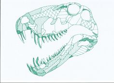 Dimetrodon (Two Measures of Tooth) - This fearsome prehistoric mammal-like reptile roamed the Earth in thePermian Era