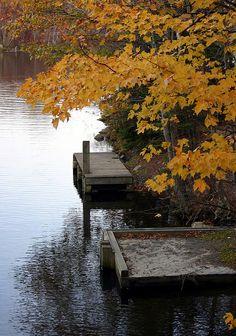Autumn on the lake. Fall Pictures, Fall Photos, Nature Pictures, Autumn Lake, Autumn Scenes, Deciduous Trees, Best Seasons, Nova Scotia, Fall Season