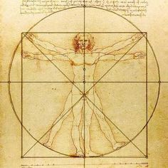 The Golden Ratio - Math Images - Leonardo da Vinci's drawing of the Vitruvian Man fits the approximation of the golden ratio. It is thought to be an image of the perfect man.