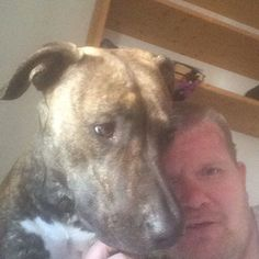 Janne M and Tara the Best PiTBuLL in The worLD