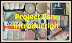 The Life of Annelise: Project 12 Pan: Introduction