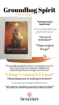 Just Let It Go, Getting To Know You, Getting Old, Animal Spirit Guides, Spirit Animal, Witch Board, Tarot Card Spreads, Power Animal, First Blog Post
