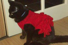 Cat clothes Hand knit cat dress in Red in a sparkle by CUTIEDOG