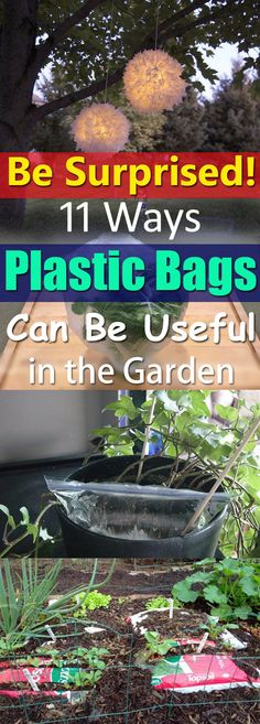 Plastic Bags are everywhere, you can recycle them easily with these 11 practical DIY uses of plastic bags in the garden!