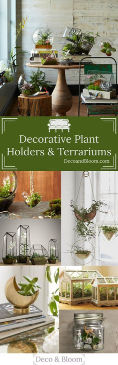 Stunning Decorative Plant Holders & Terrariums from the Home Decor Discovery Community of www.DecoandBloom.com