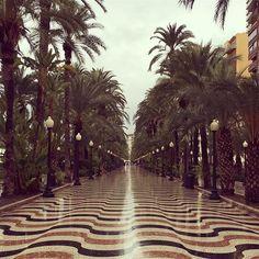 Este miércoles de noviembre nos regala lluvia ☔️ que falta nos hace  #FelizDia #MifotoAlicante #Alicante #CostaBlanca