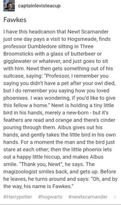 It is cute, but idk, Phoenixes aren't lost kittens, they're highly independent, magically powerful creatures whose respect I'd hard won. Fawkes chose Dumbledore, and maybe they did meet through Newt, but I doubt it was a scene like that.