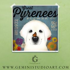 Great Pyrenees dog flower company artwork illustration giclee archival signed artists print  by stephen fowler by geministudio on Etsy https://www.etsy.com/listing/154931679/great-pyrenees-dog-flower-company