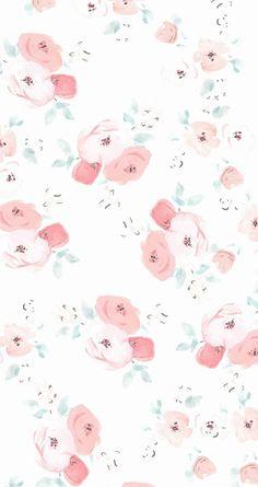soft rose flowers