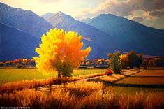 61 Landscape Oil Paintings By Artist Douglas Aagard Landscape Artwork, Abstract Landscape, Guache, Pastel Art, Pics Art, Tree Art, Painting Inspiration, Beautiful Landscapes, Oeuvre D'art