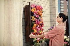 El Jardín vertical como su nombre indica es un jardín (o huerto) en posición vertical, es una tendencia que esta de moda y que supone una solución para el espacio reducido en los balcones o simplemente por estética.