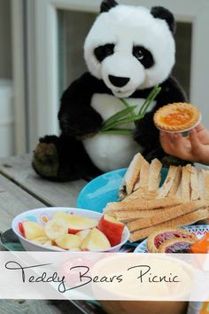 Teddy bears picnic - a fun and inexpensive way to add some fun to the kids daily routine and keep them entertained over the summer