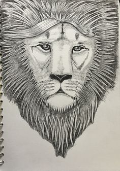 Caroline Songi Cook Lion Head