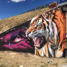 Tigre - DAVID BARRERA