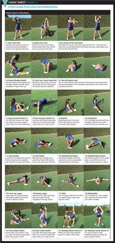 YCADA Stretching Cheat Sheet