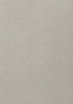 CHAMELEON, Light Grey, T57154, Collection Texture Resource 5 from Thibaut