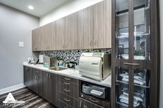 Contemporary Dental Cabinetry. Dental Office Design by Arminco Inc.