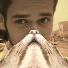 Give Yourself A Cat Beard - #catbeardghhfhfh