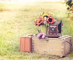 Suitcase & camera. So cute - could do photo shoot here.