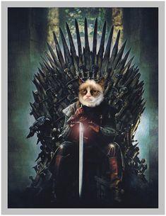 Game Of Thrones Cat, Game Of Thrones Poster, Grumpy Cat, Portrait Images, Pet Portraits, Portrait Renaissance, Dog Games, Bald Eagle, Fine Art