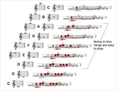 How to Play the Flute:Playing the Flute - Musical Instrument Guide - Yamaha Corporation Flute Sheet Music, Easy Piano Sheet Music, Piano Music, Music Education, Education Quotes, Flute Fingering Chart, Music Sub Plans, Flute Instrument, Songs