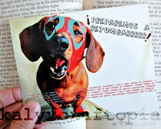 Let's Get Ready to Rumble Luchador Mexican Wrestler  Dachshund Blank Card. $3.00, via Etsy.