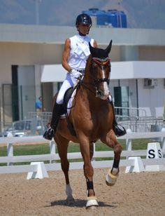 Paralympic Games - Team Belgium | Rio 2016 - Michèle George & FBW Rainman | Para-Equestrian
