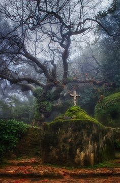 Convento dos Capuchos (Capuchos Convent), Sintra, Portugal by Taylor Moore …