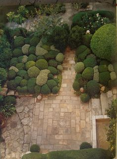 "An overhead detail of the late Nicole de Vesian's inspirational ""sculpture"" garden in Provence, where hundreds of box shrubs are pruned into mounds that resemble large pebbles."