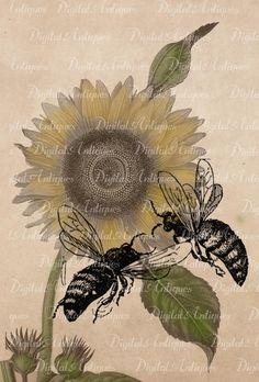 Vintage Bees Printable Images  Social Network Designer http://www.megastarmedia.com/social-networking-webdesign.html
