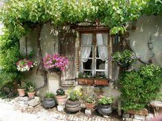 Potted flowers outside a quaint European home.