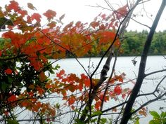 Where to stay in New England for the fall foliage season: http://visitingnewengland.com/fall-foliage-lodging.html #fallfoliage #newenglandfalltravel
