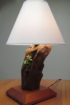 Custom-made mahogany and driftwood lamp base with planted succulents  http://www.etsy.com/listing/89208107/custom-made-mahogany-and-driftwood-lamp?ref=sc_3&sref;=sr_da260541b1c47134e6228de425a146817ffc25a314f7cf178b5080171af5a8a7_1326230991_14180568_salvage