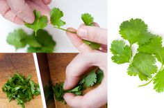 #HowTo Cook with Fresh Herbs