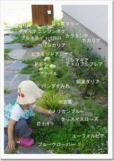 お庭の現状 : ツマリョコ!ブログ