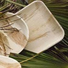 Eco Friendly Compostable Areca Leaf plates